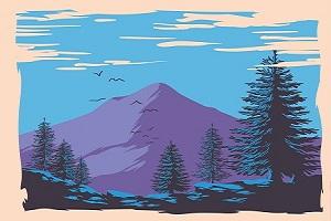 pine-trees-in-landscape.jpg