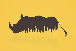 rhinoceros-feng-shui.jpg