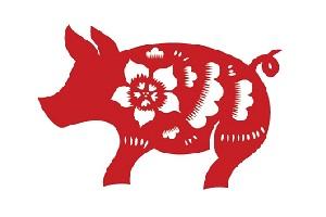 pig-zodiac.jpg