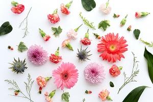 feng-shui-flowers.jpg