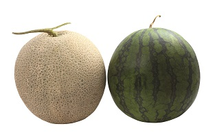 melons-associated-with-pregnancy-luck.jpg