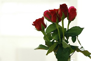 red-roses-in-vase.jpg