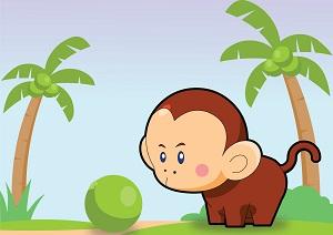 monkey-symbolism-feng-shui.jpg