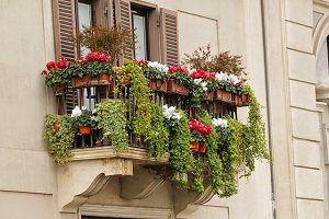 balcony-garden.jpg